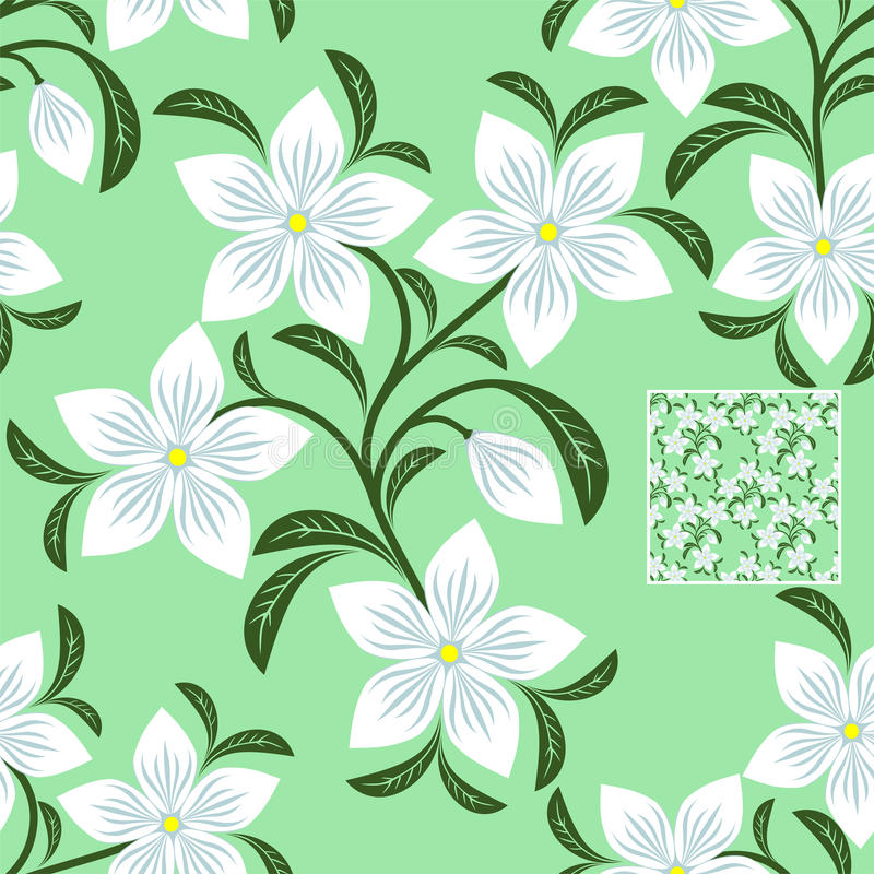 Flower seamless Pattern with white Flowers on green vector illustration