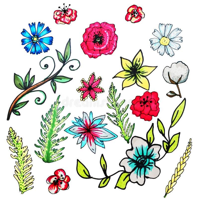 Flower set drawn by hand.Isolated flowers.Liliya, cornflower, chamomile, poppy, cotton, green branches stock illustration