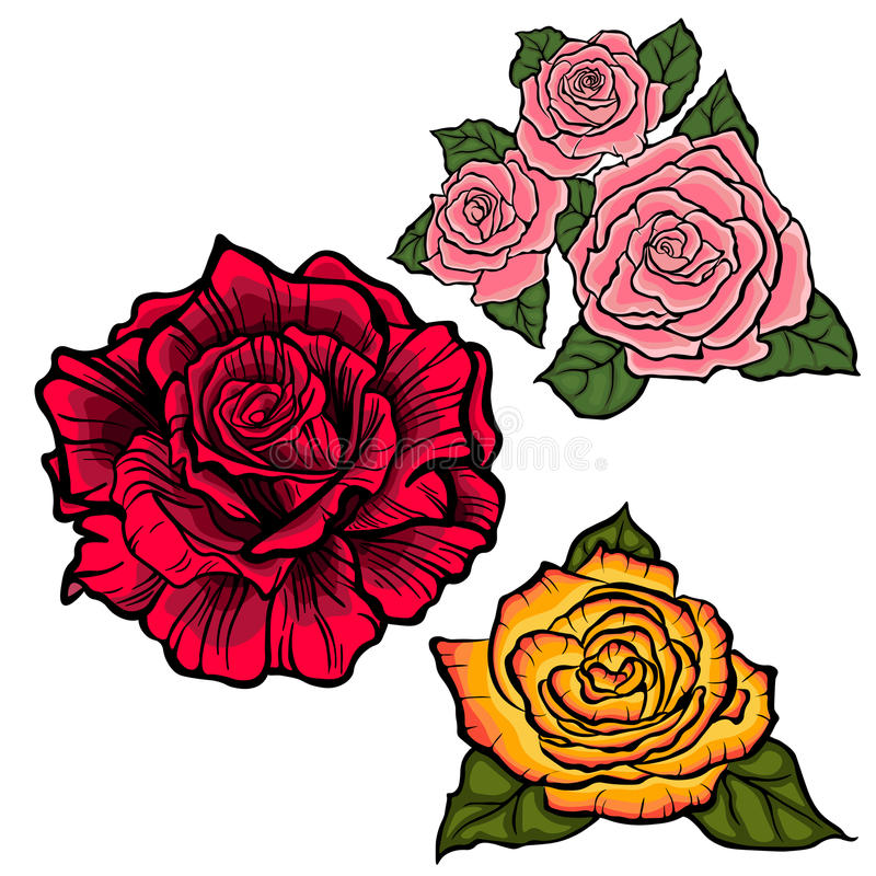 Flower set with red,orange and pink roses vector illustration