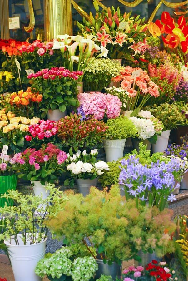 Flower shop. Various flowers background at flower shop stock image