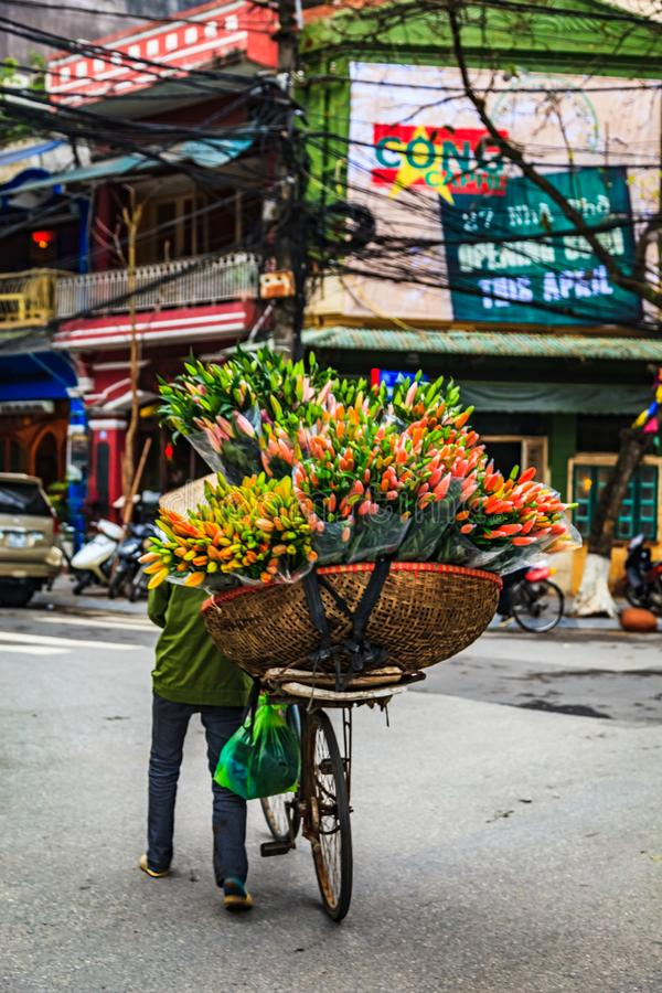 Flower shop on bike system in Hanoi, Vietnam. Flower shop on bike system in Hanoi, Capital, North of Vietnam. Street-life in downtown of the city stock images
