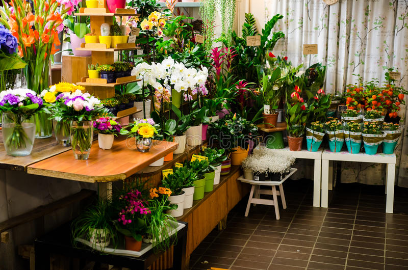 Flower shop. Different cut flowers and pot plants in a finnish flower shop stock photos