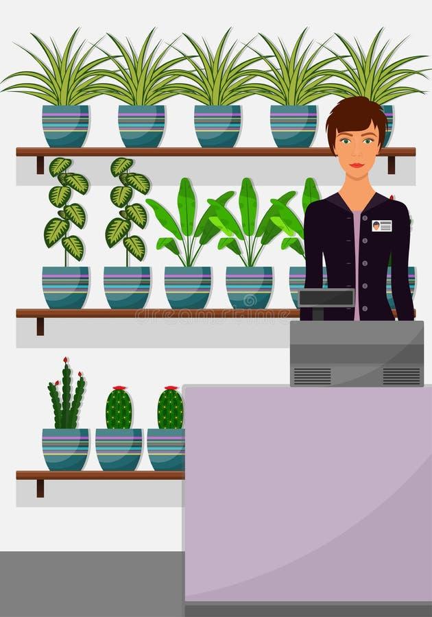 Flower shop interior. Woman seller behind the counter, houseplants on shelves. Chlorophytum, dieffenbachia, cactus. Vector illustr stock illustration