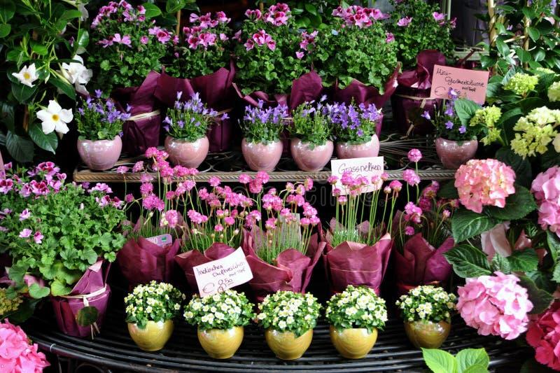 Flower shop. In Vienna, Austria royalty free stock photos