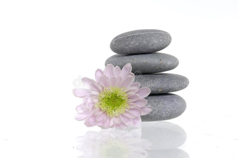 flower spa πέτρες στοκ φωτογραφία