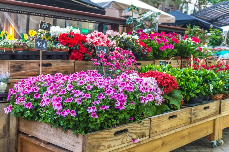 Flower stall. Selling stock image
