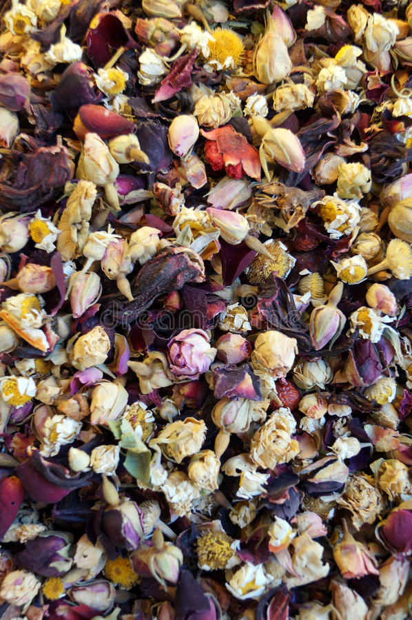 Flower tea with chamomile and rose stock photo