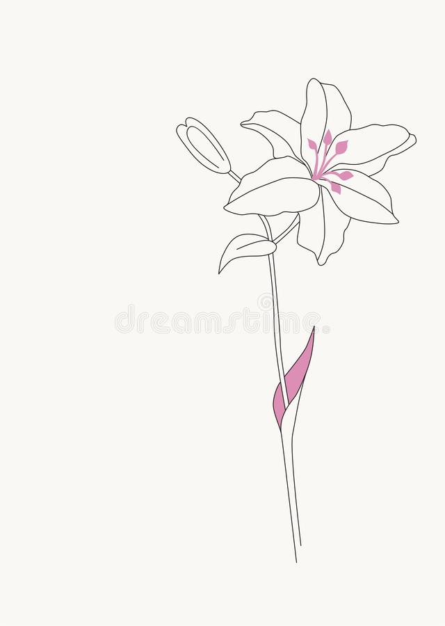 Download Flower template stock vector. Illustration of background - 12999327