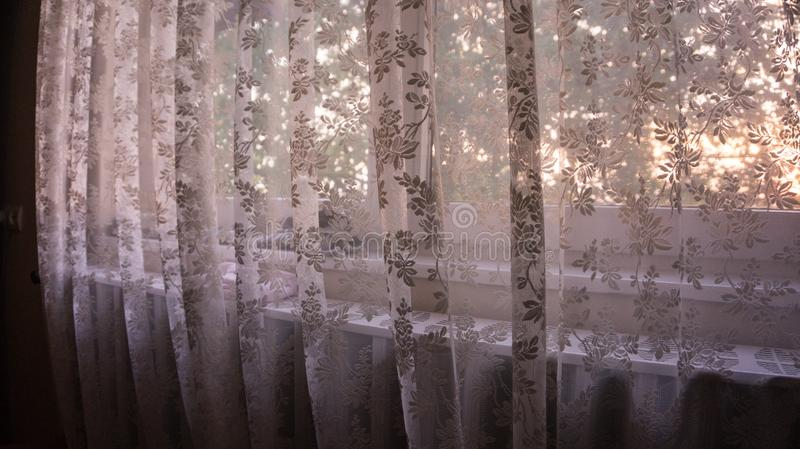 Flower textured curtain stock images