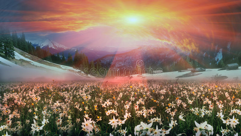 Flower Valley by Hoost. In March-April after a winter in the mountains of unstable weather, and replaced by the warmth, the sun can come quickly alpine cold stock photo