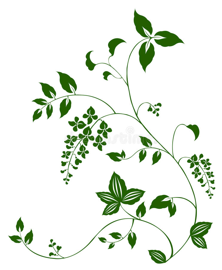 Flower and vine pattern vector illustration