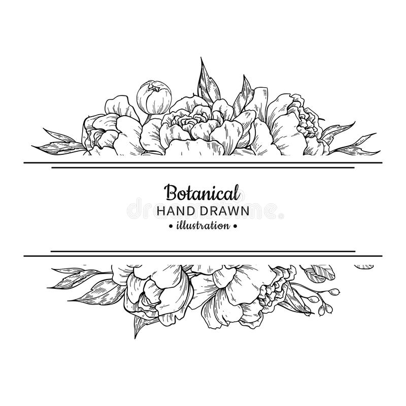 Flower vintage border. Vector peony and roses botanical drawing. Isolated sketch. Engraved bouquet with leaves and berries. Wedding invitation, label template vector illustration