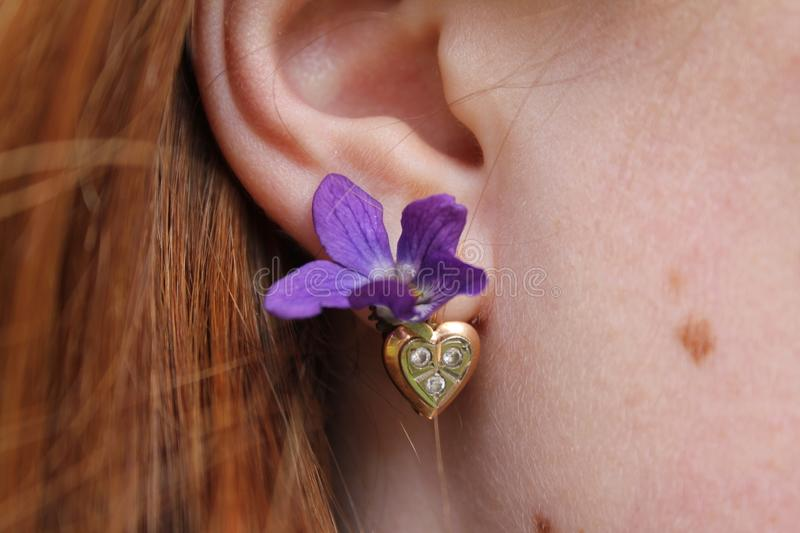 Flower violet instead of earrings for a red-haired girl. Spring. Photo for your design stock photography