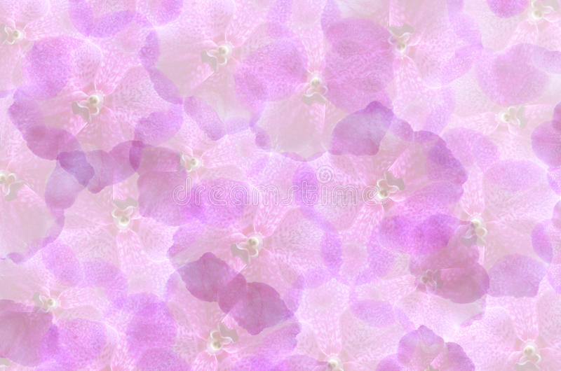 Flower wallpaper. Art background with violet flowers , abstract wallpaper stock images