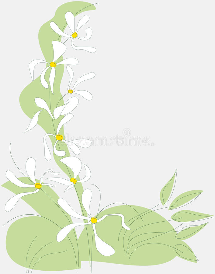 Flower white spring royalty free stock photography
