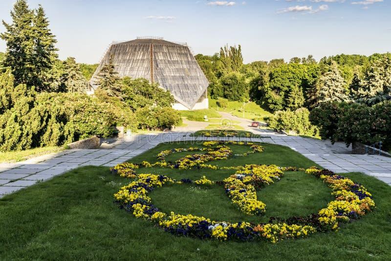 Flowerbad giallo e blu delle viole nel giardino della città fotografie stock libere da diritti