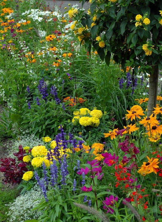 Flowerbed fotos de stock royalty free