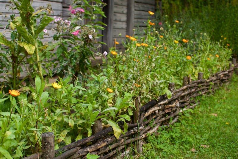 flowerbed immagine stock libera da diritti