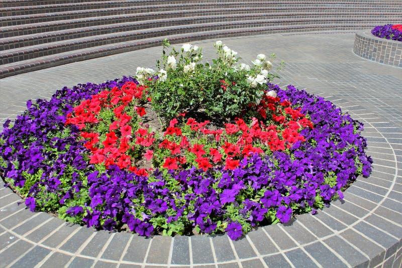 flowerbed lizenzfreie stockbilder
