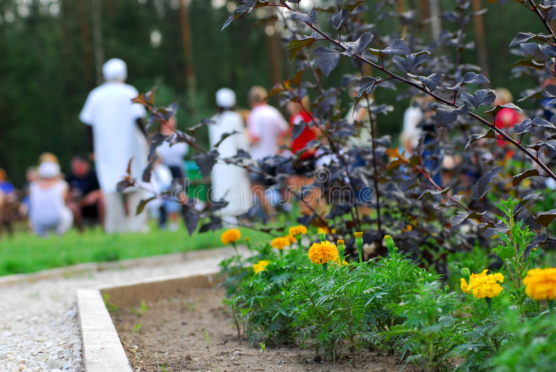 Flowerbed in park. With crowd of people in background stock photo