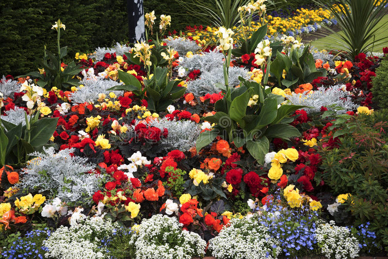 Flowerbed in the Park in the market town of Sandbach England. Sandbach has an important historical feature on the cobbled market square, two Saxon crosses that royalty free stock photography