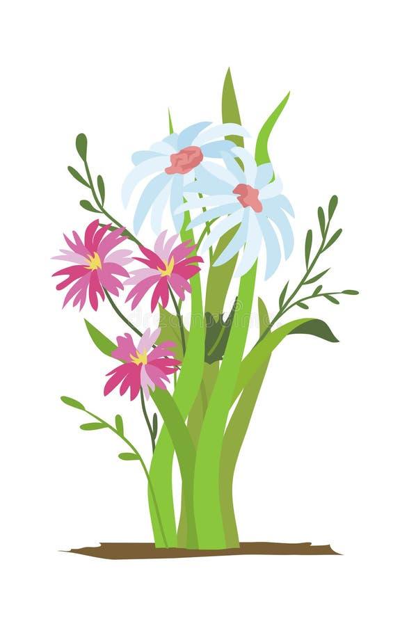 flowerbed Stellen Sie von den wilden Wald- und Gartenblumen ein junge gelbe Blume gegen weißen Hintergrund Flaches Vektorblumen-I stock abbildung