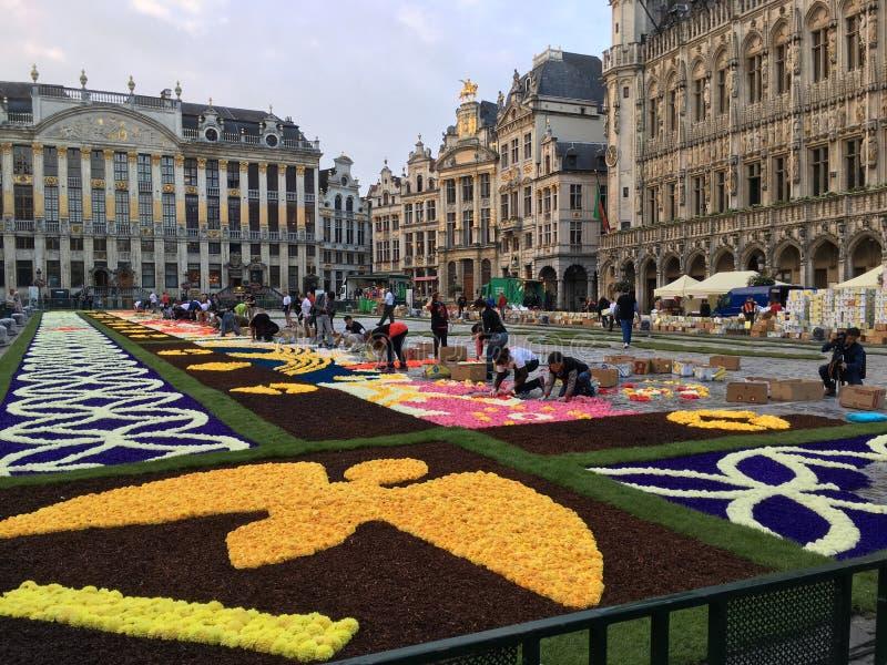 Flowercarpet 2016 images stock