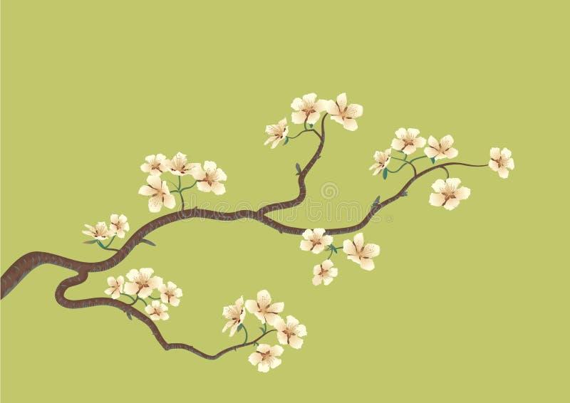 Flowered sakura stock illustration