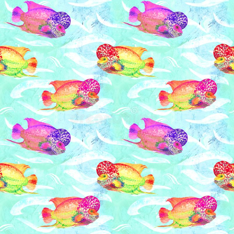 Flowerhorn cichlid fish Elvis strain, hand painted watercolor illustration, seamless pattern on turquoise ocean surface vector illustration