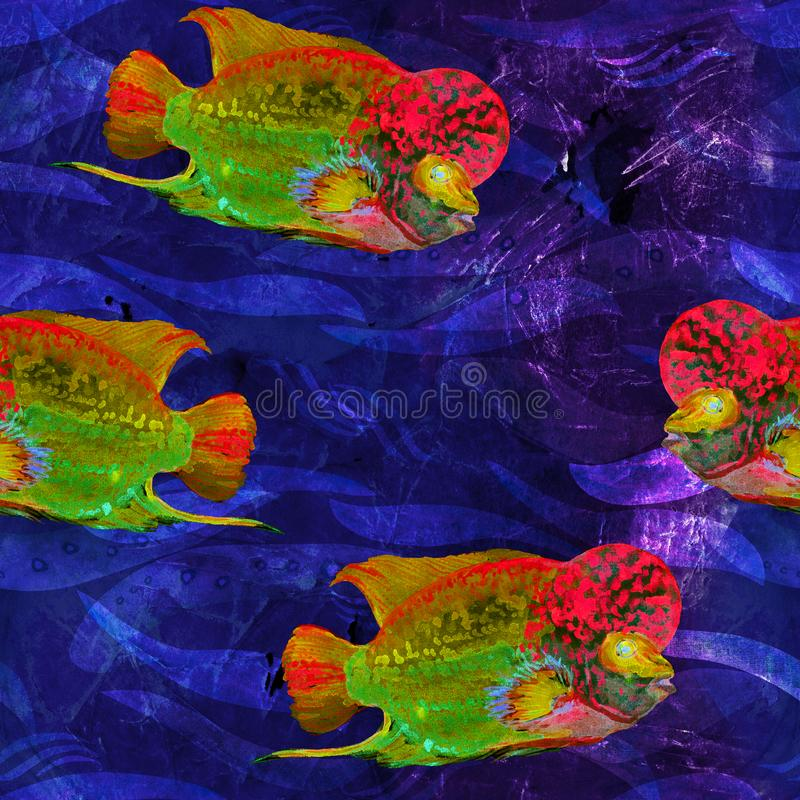 Flowerhorn cichlid fish hand painted watercolor illustration, seamless pattern on dark blue ocean surface with waves background. Flowerhorn cichlid fish Elvis royalty free illustration