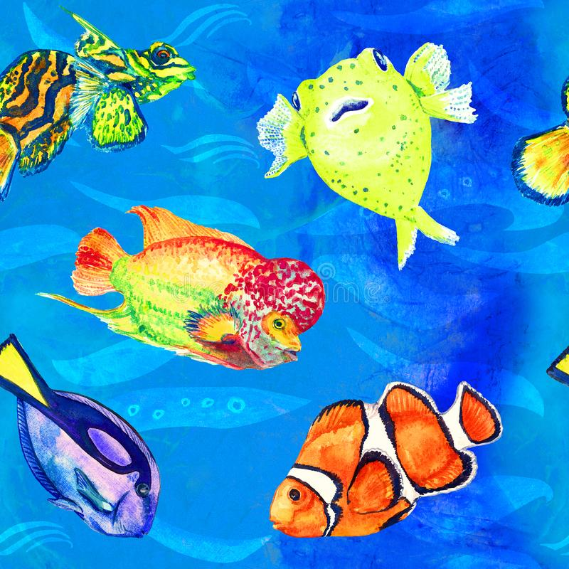 Flowerhorn cichlid fish, Pufferfish, Clownfish, Mandarin fish, Paracanthurus hepatus, hand painted watercolor seamless pattern. Flowerhorn cichlid fish stock illustration