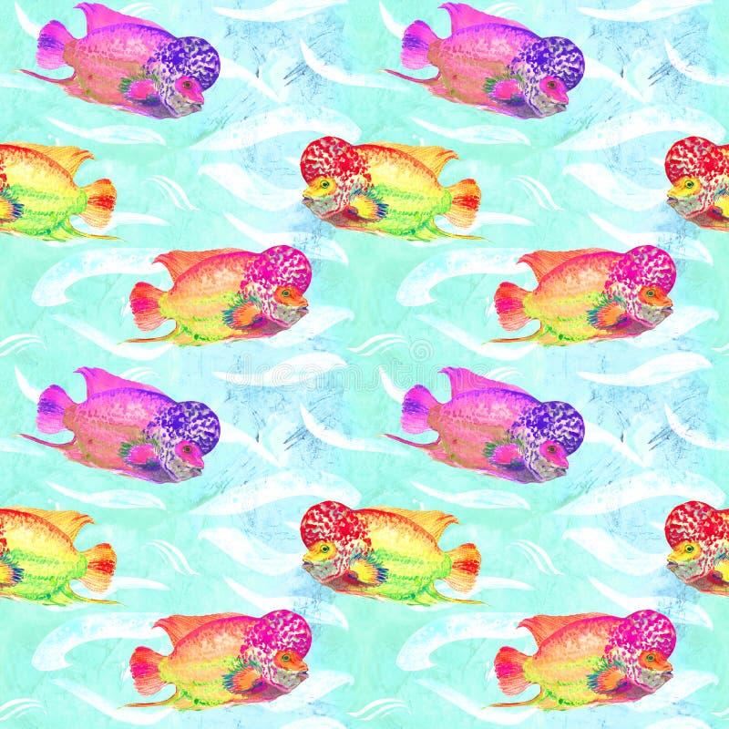 Flowerhorn cichlid ryba Elvis napięcie, ręka malująca akwareli ilustracja, bezszwowy wzór na turkusowej ocean powierzchni ilustracja wektor
