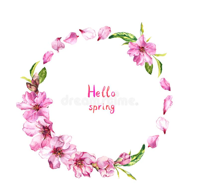 Flowering cherry tree, sakura blossom, pink flowers petals. Floral wreath, text Hello spring . Watercolor round border stock illustration