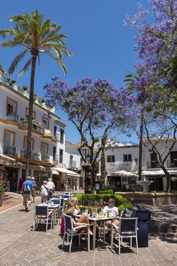 Flowering Jacaranda trees Marbella Spain royalty free stock photos