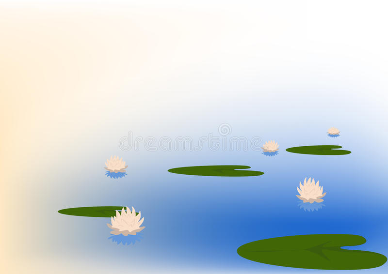 Flowering Water Lilys Stock Images
