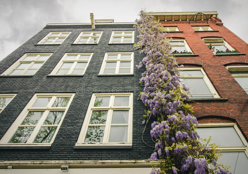 Traditional, colorful Dutch housing in the center of Amsterdam, North Holland, the Netherlands stock photos