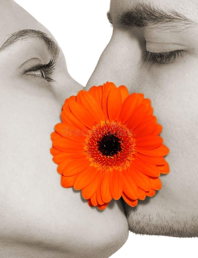 Flowerkiss imagem de stock