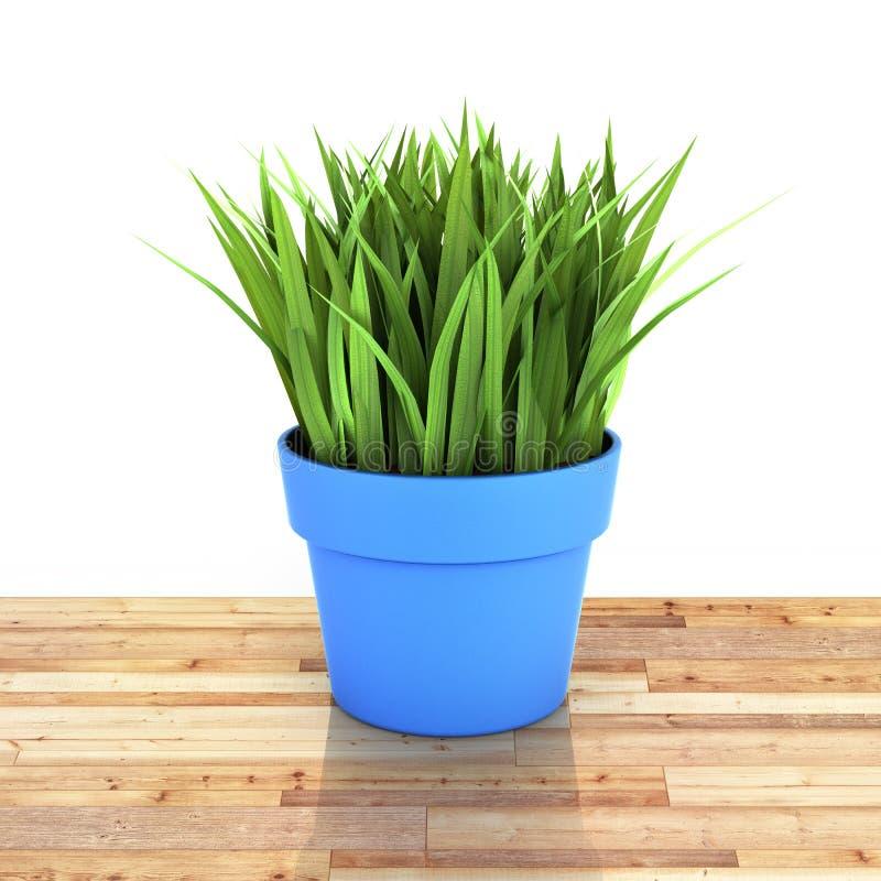 Flowerpot με την πράσινη χλόη στο ξύλινο πάτωμα και άσπρο υπόβαθρο με την αντανάκλαση τρισδιάστατη διανυσματική απεικόνιση
