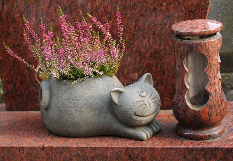 Flowerpot γατών με την ερείκη στοκ φωτογραφία με δικαίωμα ελεύθερης χρήσης