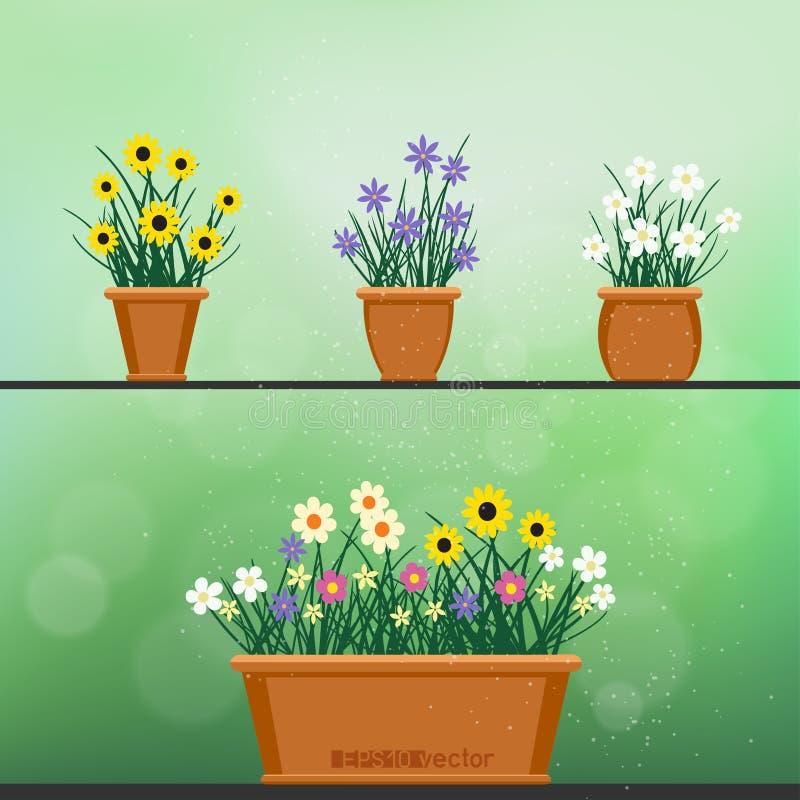 Flowerpot με το καθορισμένο πράσινο υπόβαθρο λουλουδιών απεικόνιση αποθεμάτων