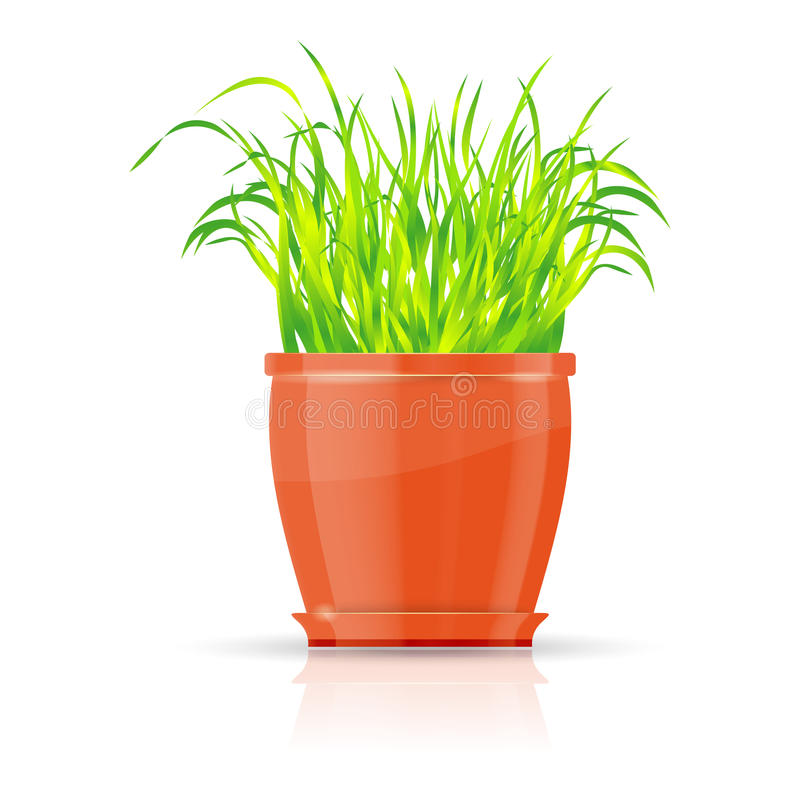 flowerpot πράσινο πορτοκάλι χλόης ελεύθερη απεικόνιση δικαιώματος