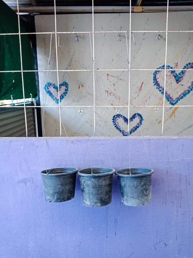 Flowerpot τρία στοκ εικόνα