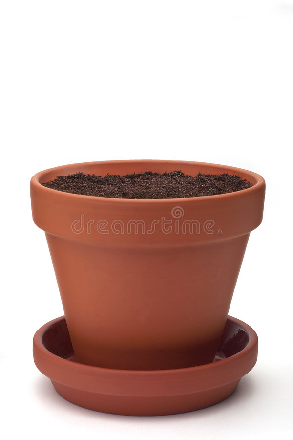 flowerpot стоковые фотографии rf