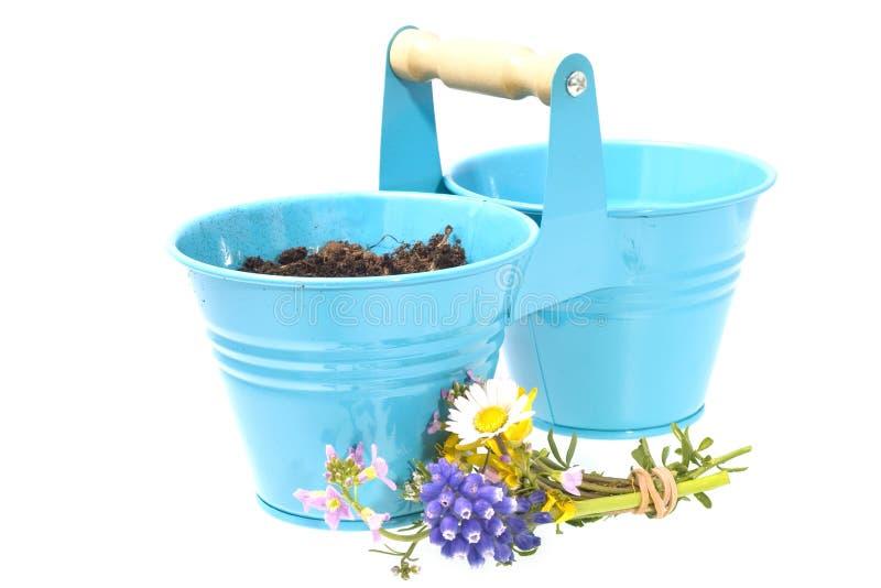 Flowerpot imagem de stock royalty free