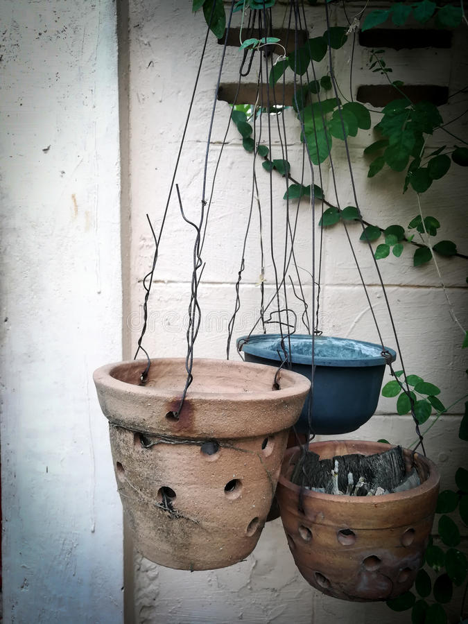 Flowerpot. The empty flowerpot hanging in the garden stock photos