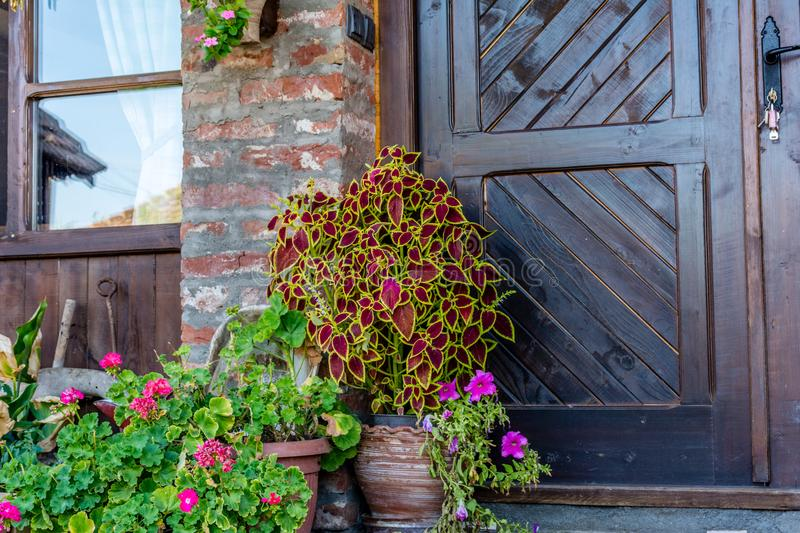 Flowerpot with flowers. In front of the door ethno house royalty free stock photo