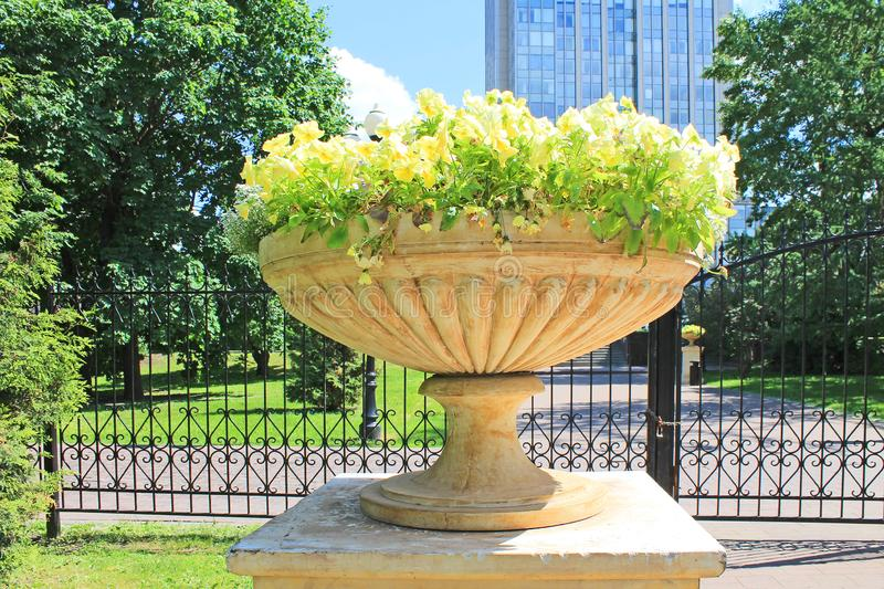 Flowerpot with flowers in the Park in summer. Beautiful flowerpot with delicate flowers in summer in the Park on a bright Sunny day royalty free stock photos