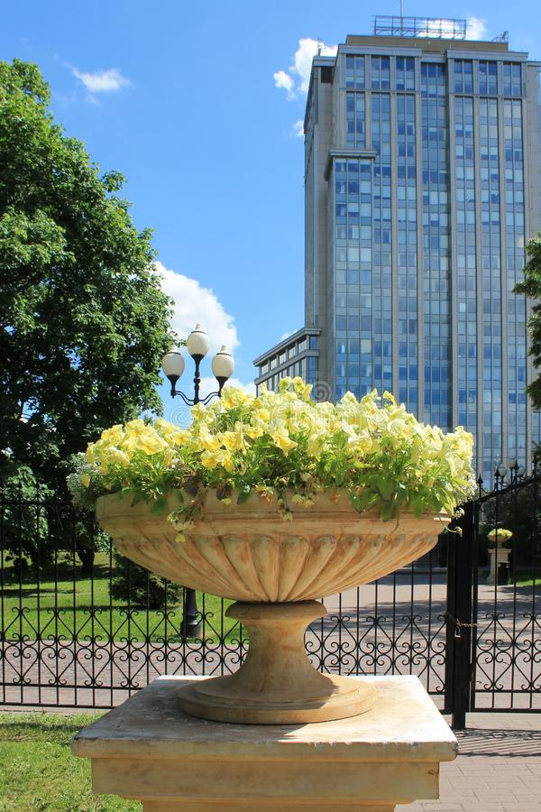Flowerpot with flowers in the Park in summer. Beautiful flowerpot with delicate flowers in summer in the Park on a bright Sunny day stock photo