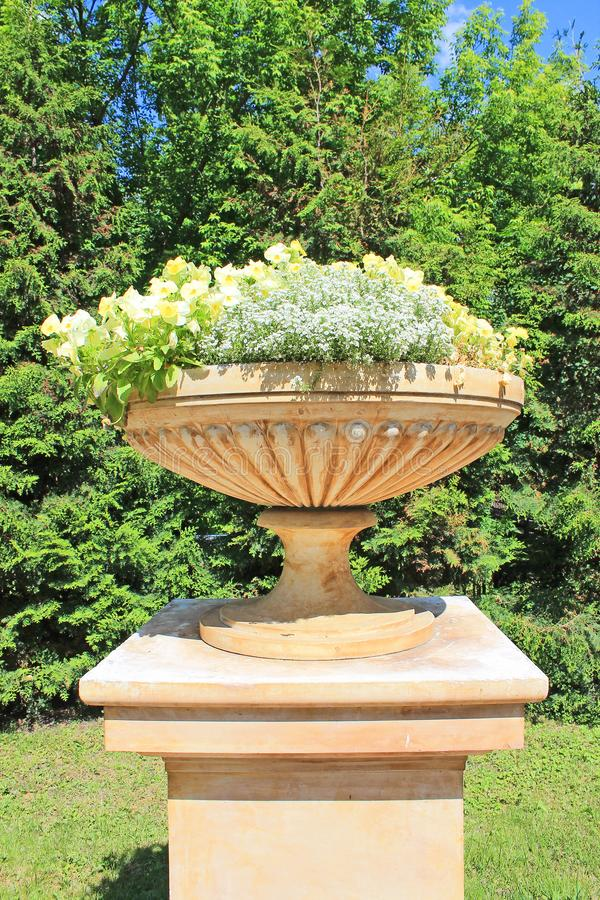 Flowerpot with flowers in the Park in summer. Beautiful flowerpot with delicate flowers in summer in the Park on a bright Sunny day stock photography