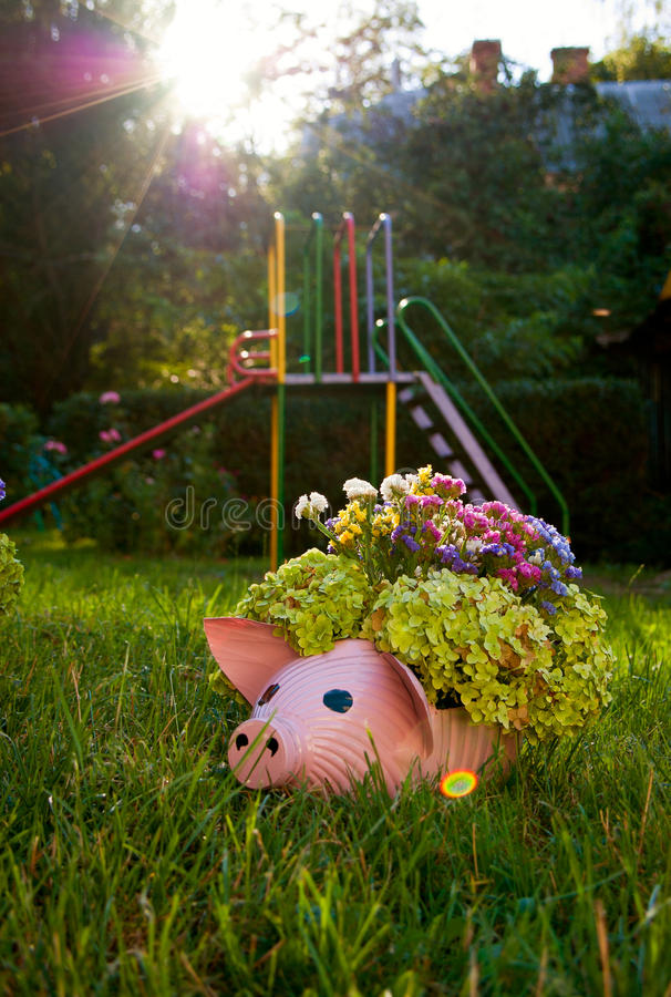 Flowerpot the form of pig on grass stock photography